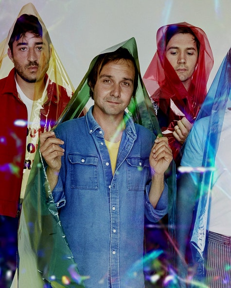 grizzly bear liners header