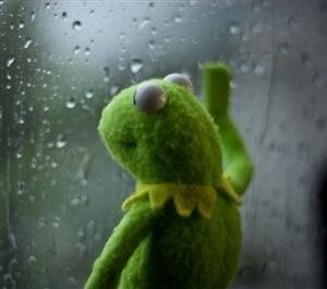 Sad Kermit