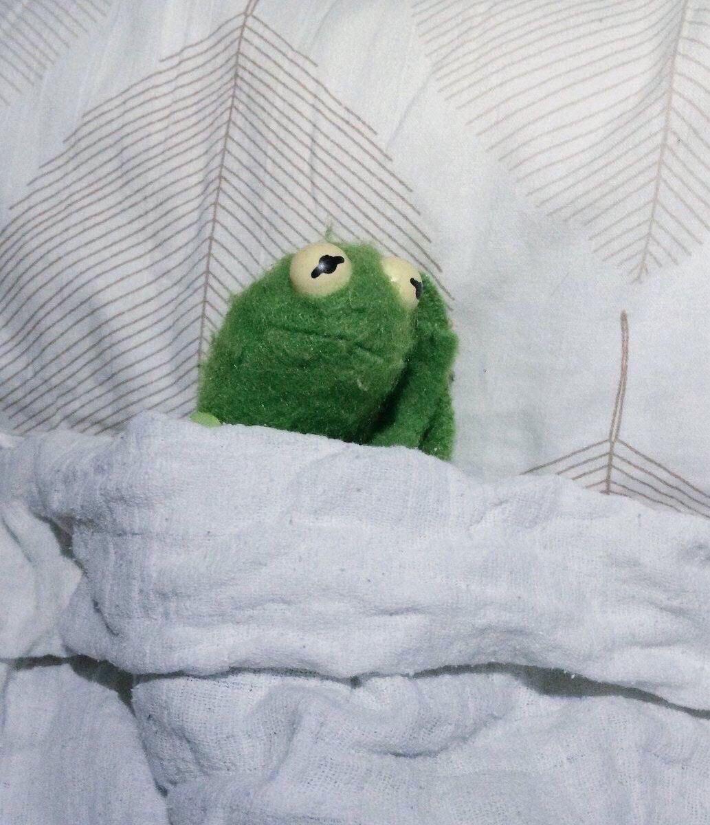 Sad Kermit 2