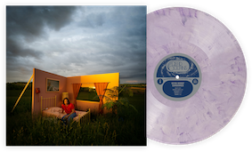sundowner_vinyl_transparent.png